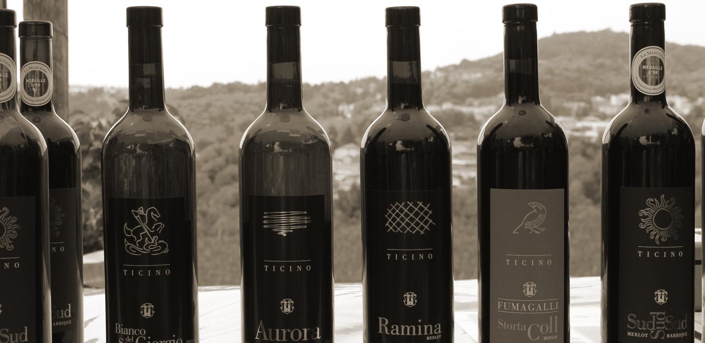 Azienda vinicola Ticino